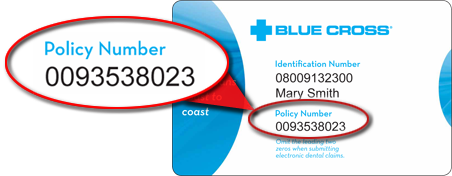 Group Number On Insurance Card Blue Cross Blue Shield ...